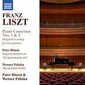 Thumbnail for the Peter Ritzen - Piano Concerto No. 2 in A Major, S651/R373: Adagio sostenuto - Un poco piu mosso link, provided by host site