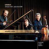 Thumbnail for the Boris Kucharsky - Piano Trio No. 1 in B-Flat Major, Op. 99, D. 898: II. Andante un poco mosso link, provided by host site