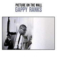 Thumbnail for the Gappy Ranks - Picture on the Wall link, provided by host site