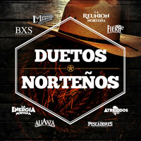 Thumbnail for the La Maquinaria Norteña - Piénsalo Bien link, provided by host site
