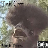 Thumbnail for the Toxic Crew - Pimp in Distress link, provided by host site