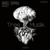 Thumbnail for the Ondrej Semyrka - Polaris link, provided by host site