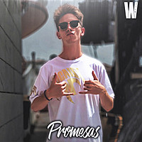 Thumbnail for the Walls - Promesas link, provided by host site