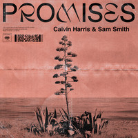 Promises with sam smith thumb
