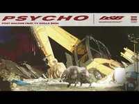 Psycho b899e8bb bb93 4e8c 879b db85f615773c thumb