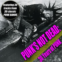 Thumbnail for the The Exploited - Punks Not Dead link, provided by host site
