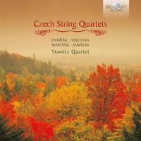 Thumbnail for the Antonín Dvořák - Quartet No. 2 in B-Flat Major, Op. 4, B. 17: I. Allegro non troppo link, provided by host site