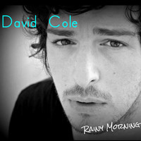 Thumbnail for the David Cole - Rainy Morning link, provided by host site