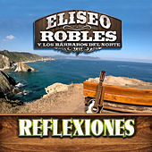 Thumbnail for the Eliseo Robles - Reflexiones link, provided by host site