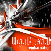 Thumbnail for the Liquid Soul - Reinkarnation link, provided by host site