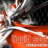 Thumbnail for the Liquid Soul - Reinkarnation (Dj Mix) link, provided by host site