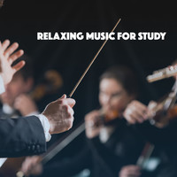 Thumbnail for the Exam Study Classical Music Orchestra - Relaxing Music for Study link, provided by host site