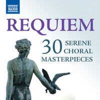 Thumbnail for the John Rutter - Requiem: Pie Jesu link, provided by host site