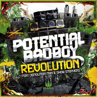 Thumbnail for the Potential Badboy - Revolution link, provided by host site