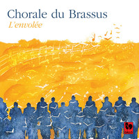 Thumbnail for the Giuseppe Verdi - Rigoletto: Choeur des courtisans link, provided by host site