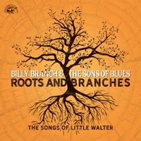 Thumbnail for the Billy Branch - Roots and Branches: The Songs of Little Walter link, provided by host site