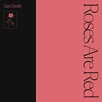 Thumbnail for the Sam Smith - Roses Are Red link, provided by host site