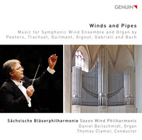 Thumbnail for the Giovanni Gabrieli - Sacrae symphoniae: Sonata pian'e forte (arr. M. Nestler for organ and wind orchestra) link, provided by host site