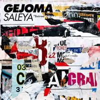 Thumbnail for the Georg Wadenius - Saleya link, provided by host site