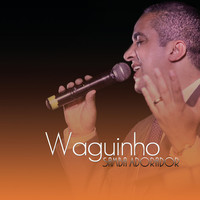 Thumbnail for the Waguinho - Samba Adorador (Ao Vivo) link, provided by host site