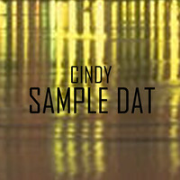 Thumbnail for the Cindy - Sample Dat link, provided by host site