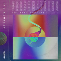 Thumbnail for the The Funk Hunters - Say Something [The Remixes] link, provided by host site