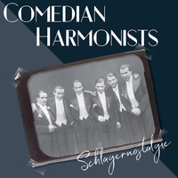 Thumbnail for the Comedian Harmonists - Schlagernostalgie link, provided by host site