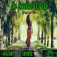 Thumbnail for the Nagazaky - Se Suelta el Pelo (Original Mix) link, provided by host site