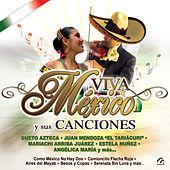 Thumbnail for the Mariachi Arriba Jalisco - Señora Bonita link, provided by host site