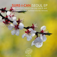 Thumbnail for the Sure-I-Can - Seoul - Lian July Remix link, provided by host site