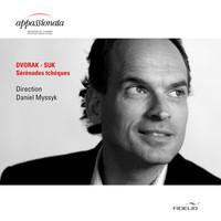 Thumbnail for the Antonín Dvořák - Serenade für Streicher, Op. 22, B. 52: II. Tempo di valse link, provided by host site