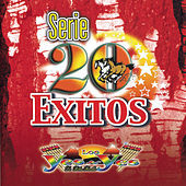 Thumbnail for the Los Yes Yes - Serie 20 Exitos link, provided by host site