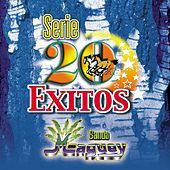 Thumbnail for the Banda Maguey - Serie 20 Exitos link, provided by host site