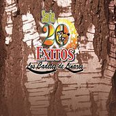 Thumbnail for the Los Cadetes de Linares - Serie 20 Exitos link, provided by host site
