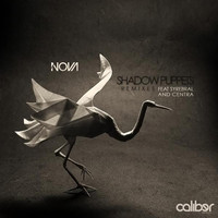 Thumbnail for the Nova - Shadow Puppets Remixes link, provided by host site