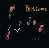 Thumbnail for the The Black Crowes - She Talks To Angels link, provided by host site