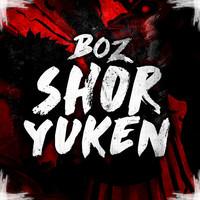 Thumbnail for the Boz - Shoryuken link, provided by host site