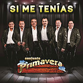 Thumbnail for the Conjunto Primavera - Si Me Tenías link, provided by host site