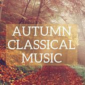 Thumbnail for the Chantal Stigliani - Sinfonia in D Minor: No. 4, BWV 790 link, provided by host site