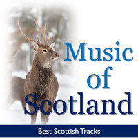 Thumbnail for the Celtic Spirit - Skye Boat Song - Best Mix link, provided by host site