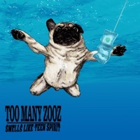 Thumbnail for the Too Many Zooz - Smells Like Teen Spirit (Instrumental) link, provided by host site