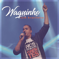 Thumbnail for the Waguinho - Som Brasileiro link, provided by host site