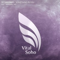 Thumbnail for the Sy Gardner - Something In You link, provided by host site