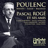 Thumbnail for the Pascal Moraguès - Sonata for clarinet and piano: I, Allegro tristamente. Très calme-Tempo allegretto link, provided by host site