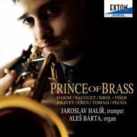 Thumbnail for the Naji Hakim - Sonata for Trumpet and Organ: 1. Allegro con spirito link, provided by host site