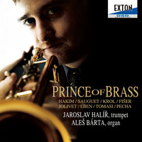 Thumbnail for the Naji Hakim - Sonata for Trumpet and Organ: 3. Presto link, provided by host site