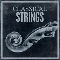 Thumbnail for the Antonio Vivaldi - Sonata in E Minor for Cello and Continuo, RV 40: II. Allegro link, provided by host site