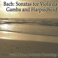 Thumbnail for the Laurence Cummings - Sonata in G major, BWV 1027: Allegro ma non tanto link, provided by host site