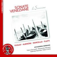 Thumbnail for the Antonio Vivaldi - Sonata per traversiere e basso continuo in E Minor, RV 50: I. Andante link, provided by host site
