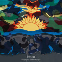 Thumbnail for the Tunng - Songs You Make at Night link, provided by host site
